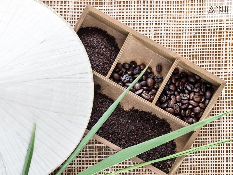robusta anni coffee